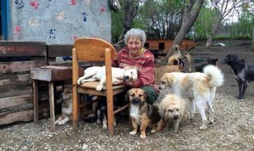 Wie komter 5 okt. mee om deze lieve oude vrouw te helpen met de omheining van haar asiel?