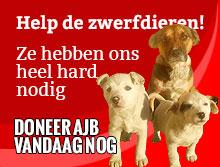 dieren nood helpen