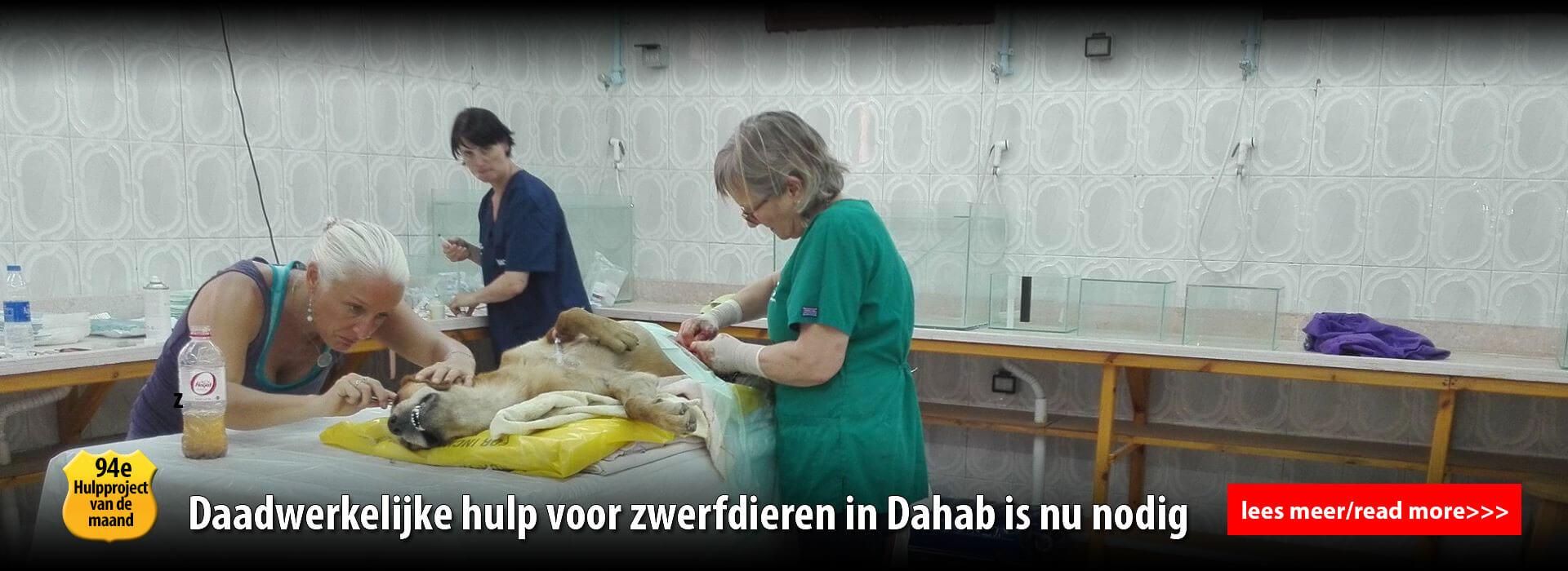 diashow dia 5 - operatie 2