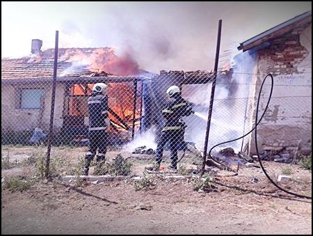 Brand in dierenverblijf Sofia