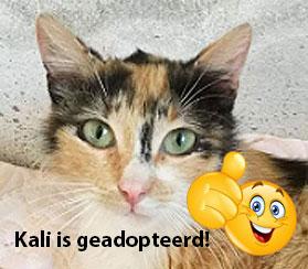Kali IS GEADOPTEERD