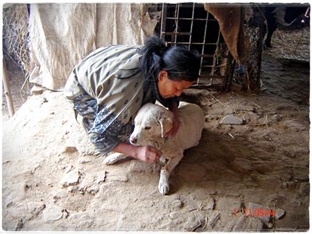 Kijk met hoeveel liefde malika dit dier helpt