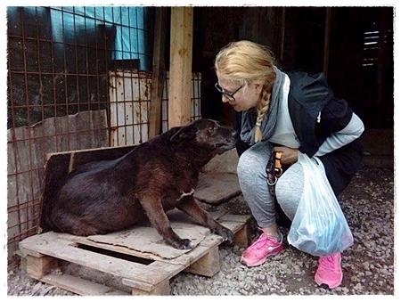 Ook deze hond werd door Aida geholpen