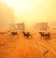 Extra Hulpactie 106 – Branden in Griekenland