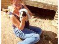 Hulpactie 105 – 300 honden zonder steun op Zakynthos