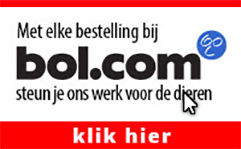 Bol.com banner
